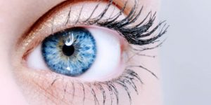 6 Interesting Facts about your Eyes You Should Know